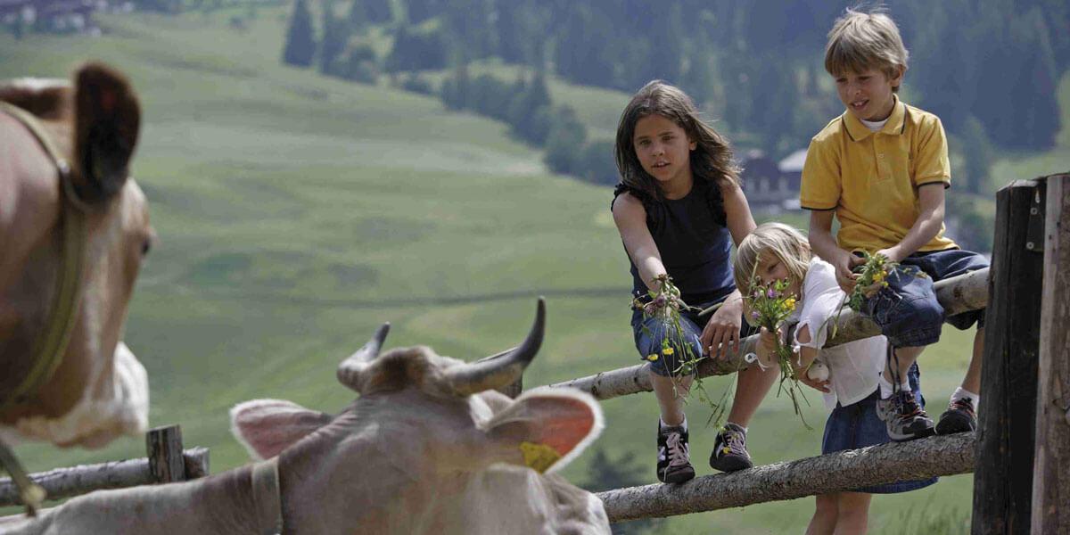 Una vacanza ricca di avventure per tutta la famiglia – Agriturismo a Luson / Alto Adige
